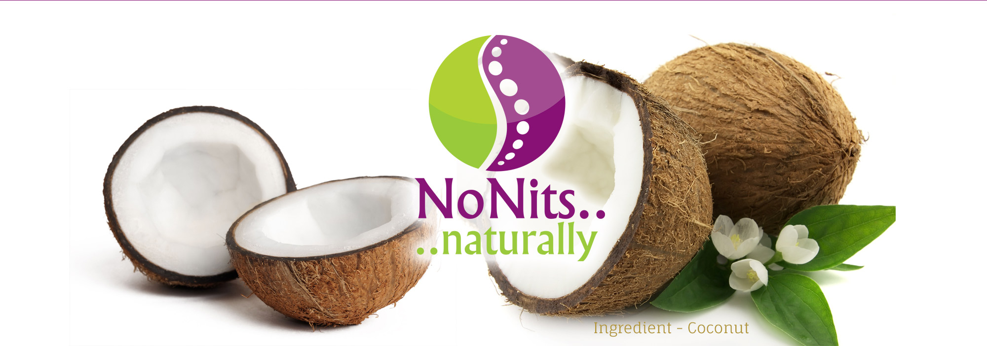 Banner Coconut